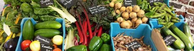 Nouveau : Faites désormais votre marché de légumes bio le vendredi à Awans