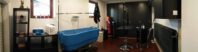 Ouverture d'un salon de toilettage à Villers-l'Evêque