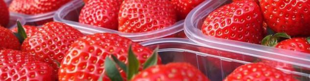 Les fraises de la dîme sont de retour