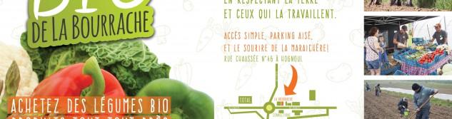 Un petit marché bio, cela vous dit? C'est organisé les vendredis à Hognoul par la Bourrache.