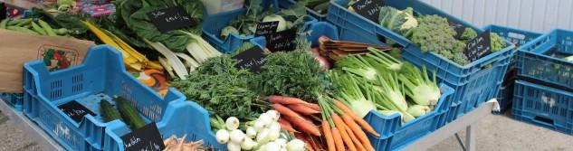 Le petit marché bio de l'EFT
