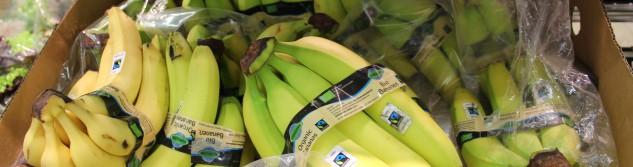 Commerce équitable : Toutes les bananes Lidl sont désormais labélisées Fair Trade