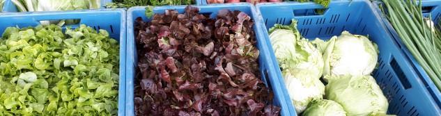 Des légumes bios frais, c'est sur le marché de la Bourrache cette apres-midi qu'on en trouve